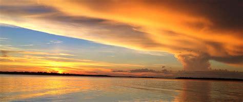 Sunset Dolphin & Wildlife Cruise   Adventures in Paradise ...