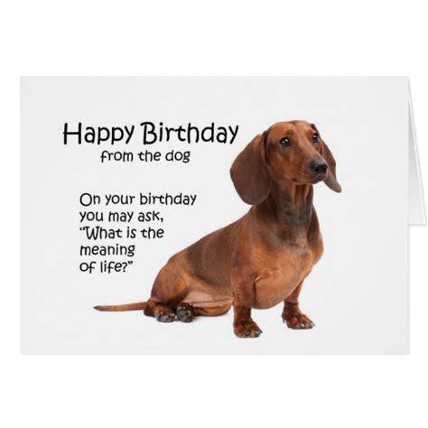 Dachshund Birthday Meme - funny dachshund birthday card zazzle