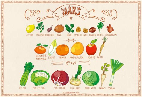 calendrier des fruits et l 233 gumes de saison annso cuisine