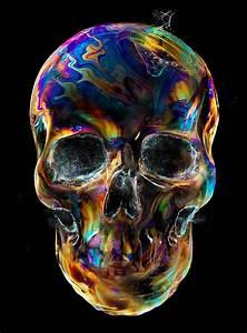 Skulls By Eddie Yau