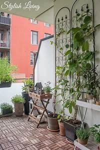 Feuerschale Für Balkon : die 25 besten ideen zu kletterpflanzen balkon auf pinterest pflanzgef e au en treibholz ~ Markanthonyermac.com Haus und Dekorationen