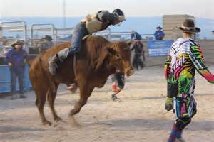 abc design rodeo nullarbor outback rodeo abc news australian broadcasting corporation