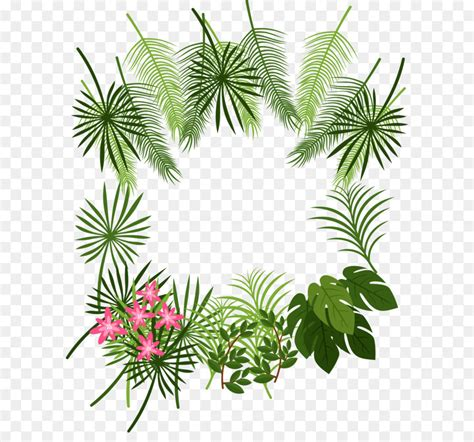 arecaceae leaf tropics plant tropical leaf decoration