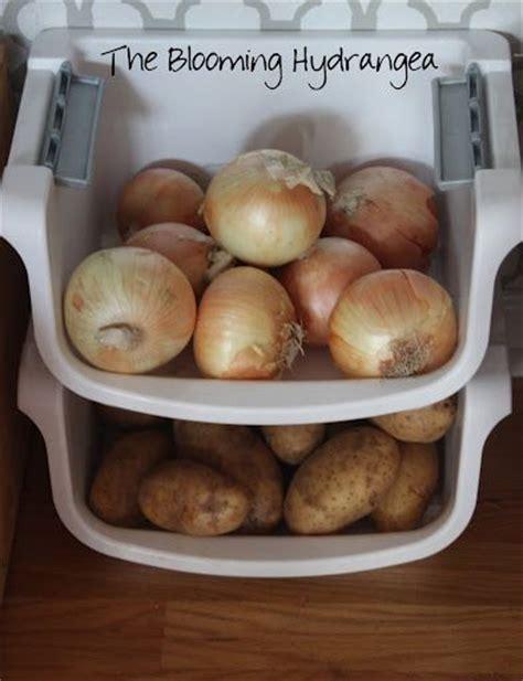 onion  potato storage hobby lobby stencil  gray