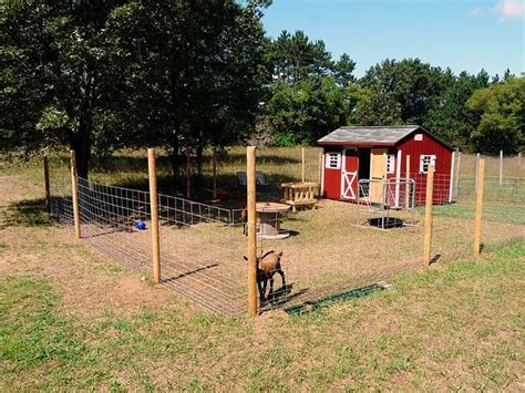 goat shelter ideas  pinterest goat house