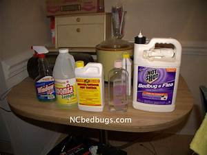 dr bed bug free education material on bed bugs cimex With ddt bed bugs