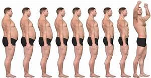 fettstoffwechsel sport