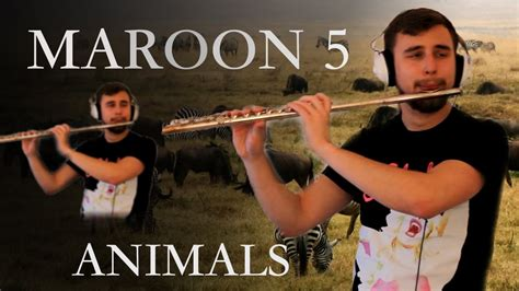 maroon  animals driverlayer search engine