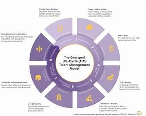 Employee Emergent Life Cycle