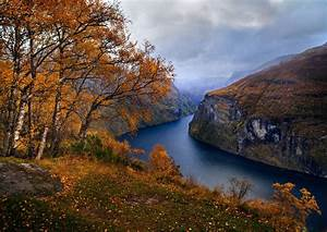 Nature, Landscape, Fjord, Norway, Fall, Trees, Grass