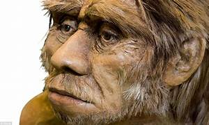 Why Homo sapiens won the battle of human survival ...