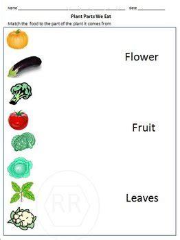 food sources grouping food  food pyramids worksheet