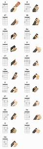 Ukulele  Basic 21 Ukulele Chords For Beginning Players