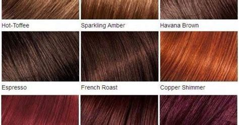 Sparkling Amber, Copper Shimmer, Ruby Fusion