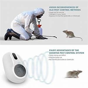 Produit Pour Tuer Les Rats : produit efficace pour tuer les rats le comparatif pour 2019 protection jardin ~ Voncanada.com Idées de Décoration