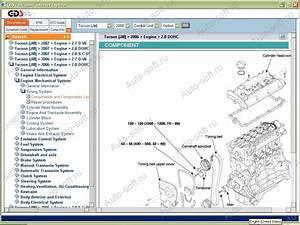 Haynes Hyundai Trajet Repair Manual