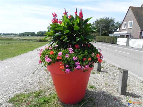photo le pot de fleur
