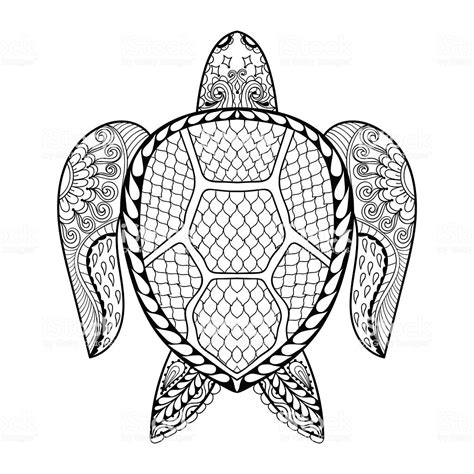 hand drawn sea turtle  adult coloring pages stock