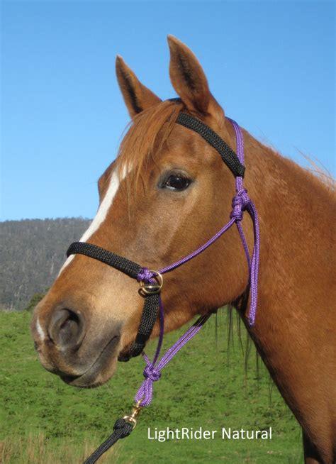 bitless horse bridles