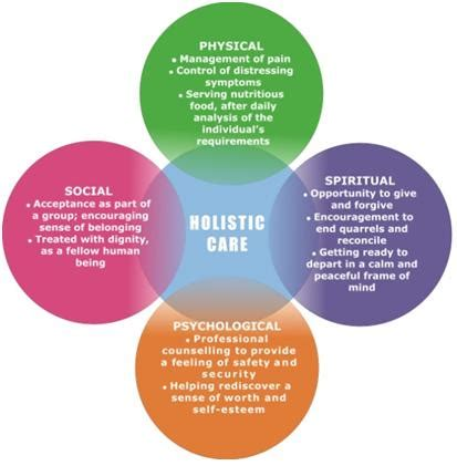 Psychology Career Diagram Of Sphere by Holistic Approach To Health Care
