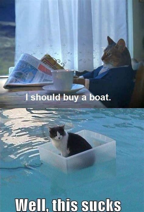 Cat Meme Boat - amazing creatures 30 funny animal captions part 5 30 pics funny animal captions