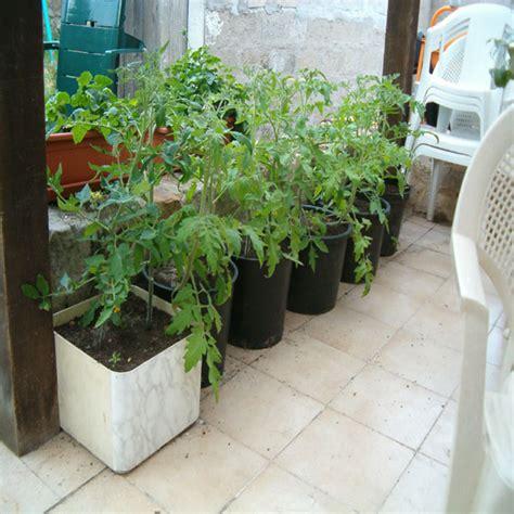 2007 plantation de chouzor semences partage net
