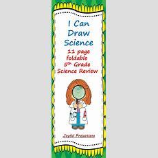 Best 25+ 5th Grade Science Ideas On Pinterest  Interactive Science Notebooks, 6th Grade Science