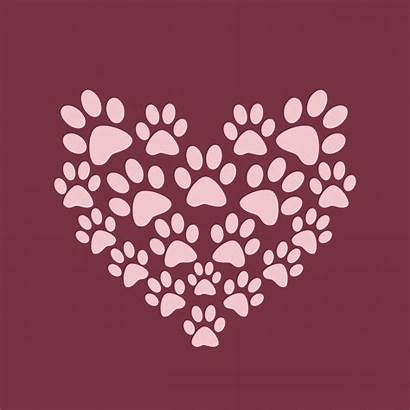 Dog Paws Paw Background Heart