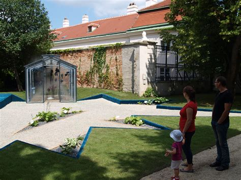 Direktor Botanischer Garten Wien by Botanischer Garten Hosta Superstar Eine Sternf 246 Rmige