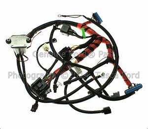 New Oem Glow Plug Wiring Harness 2000