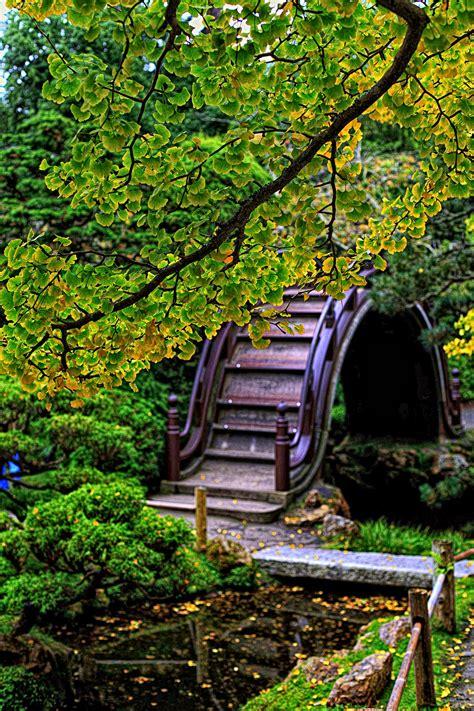 the graceful gardener 187 the japanese tea garden in golden