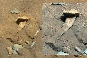 'Alien thigh bone' picture spotted on Mars by ...