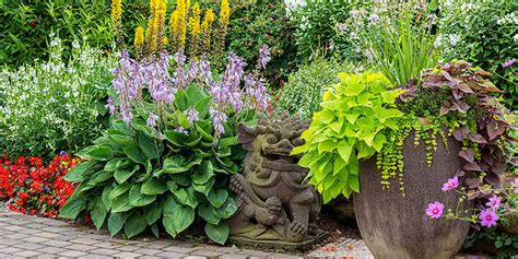 Tipps Für Den Garten