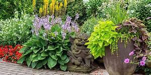 Stauden Für Den Schattigen Garten : gartenpflege gartenplanung gartenpraxis tipps f r den garten ~ Markanthonyermac.com Haus und Dekorationen