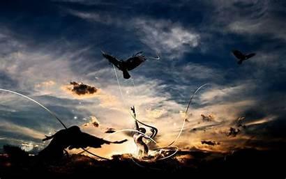 Freedom Birds Striving Wallpapers Desktop Creative