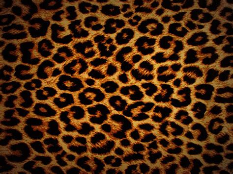 leopard background tumblr