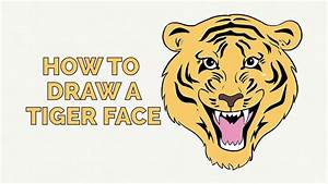 How to Draw a Tiger Face - Easy Step-by-Step Drawing ...