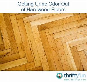 getting urine odor out of hardwood floors thriftyfun With removing dog urine odor from hardwood floors