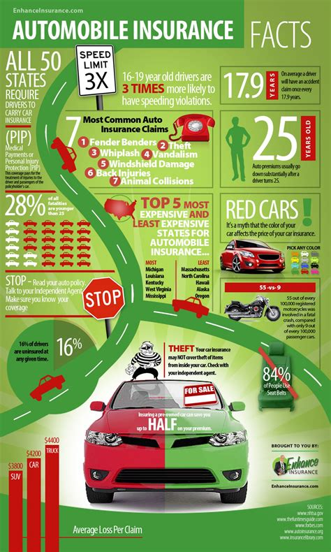 car insurance for adults auto insurance facts and interesting statistics visual ly