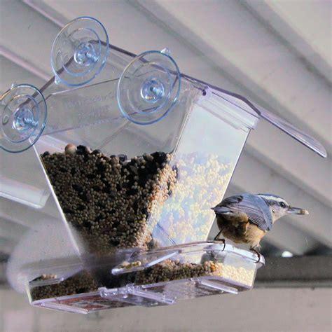 window bird feeder tales from my window bird feeder northwest picturemaker