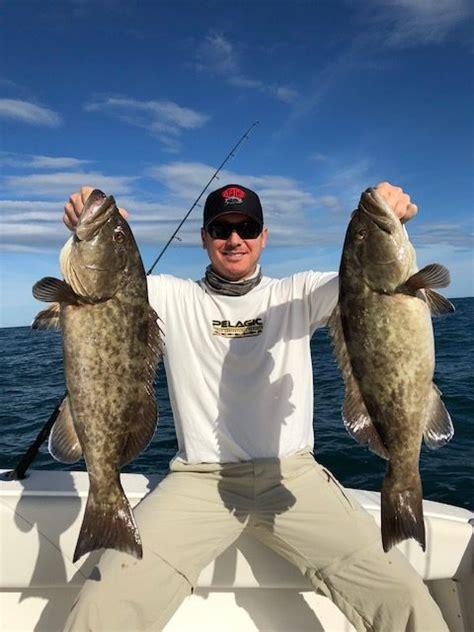 grouper gag fishing bay tampa fish yachtfish