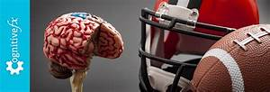 Symptoms Of A Concussion  What They Are  How Long They