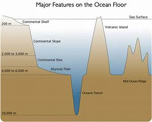 Bassic Diagram Of The Ocean