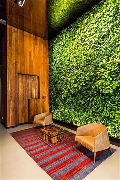 Wall Living Downtown Indoor Landscaping Projects Mini