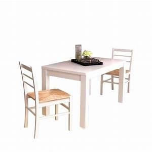 Chaise De Salle A Manger Blanche : la boutique en ligne 2 pcs chaise de salle manger peinture blanche ~ Voncanada.com Idées de Décoration
