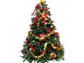 christmas tree decorated christmas tree origin of the christmas tree