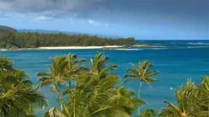 (66) hawaii gif | Tumblr on We Heart It