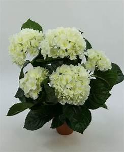 Hortensie Im Topf : hortensienbusch deluxe 42cm wei creme im topf lm kunstpflanzen kunstblumen k nstliche pflanze ~ Eleganceandgraceweddings.com Haus und Dekorationen