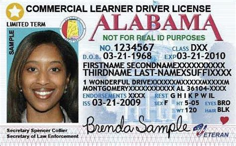 Alabama Department Of Motor Vehicles Driver S License