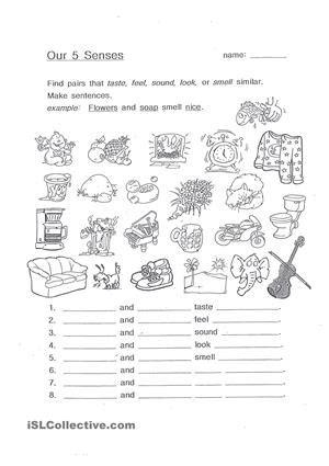 13 Best Images Of Worksheets For Grade 1 Senses  Preschool Science Worksheets Senses, Preschool